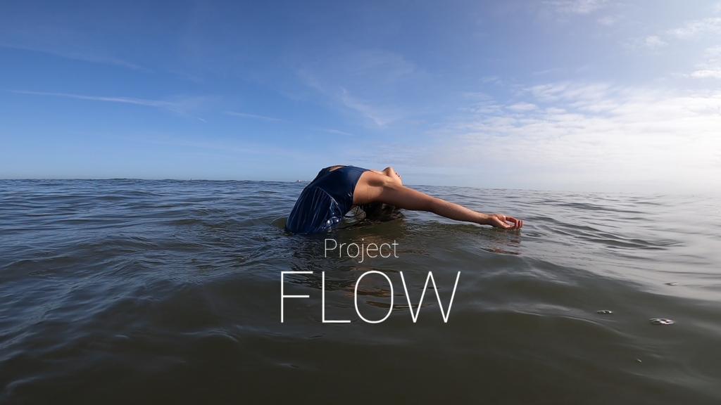 Flow project image
