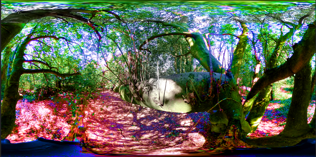 Syntropy 360 by Allie Joy
